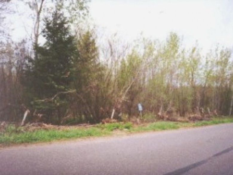 ON 9th Ave, Lake, WI by Birchland Realty, Inc - Park Falls $10,500