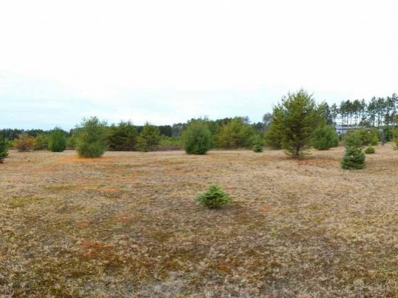 LOT 2 Green Apple Ct, Woodruff, WI by Re/Max Property Pros-Minocqua $29,500