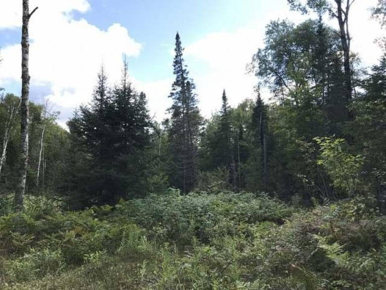 6918 Wildcat Rd, Presque Isle, WI by Lakeland Realty $119,900
