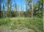 OFF Sheep Ranch Rd 2, Fifield, WI by Redman Realty Group, Llc $35,000