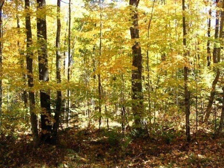 OFF Sheep Ranch Rd 4, Fifield, WI by Redman Realty Group, Llc $35,000