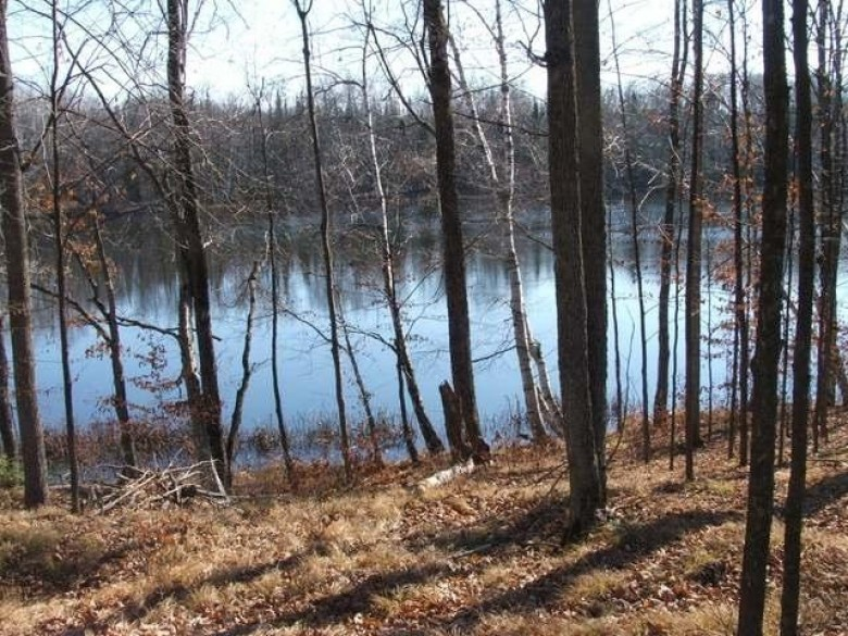 OFF Wadell Rd LOT 6, Bradley, WI by Woodland Lakes Realty, Llc $89,900
