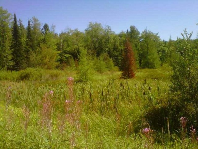 LOT 36 Cth B, Presque Isle, WI by Lakeland Realty $49,400