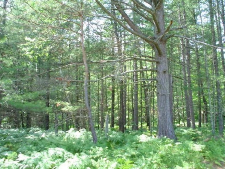 ON Bloom Rd LOT #3, Lincoln, WI by Re/Max Property Pros $17,200