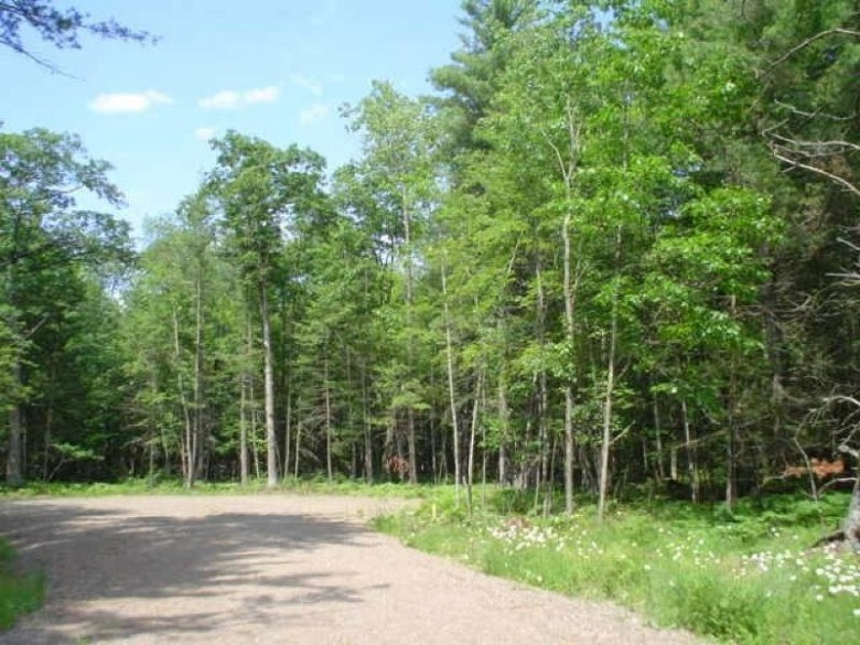 ON Bloom Rd LOT #8, Lincoln, WI by Re/Max Property Pros $19,200