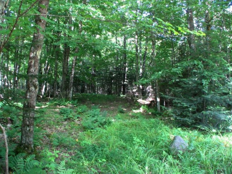 N3404 Duck Lake Rd W LOT #2, Watersmeet, MI by Eliason Realty Of Land O Lakes $149,900