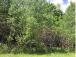 ON Cove Ridge Dr LOT 4, Norwood, WI by Wolf River Realty $19,900