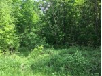 ON Cove Ridge Dr LOT 7, Norwood, WI by Wolf River Realty $19,900