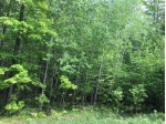 ON Cove Ridge Dr LOT 10, Norwood, WI by Wolf River Realty $19,900