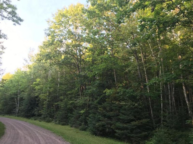 ON Eagle Lake Rd E, Enterprise, WI by Coldwell Banker Mulleady-Rhldr $41,000