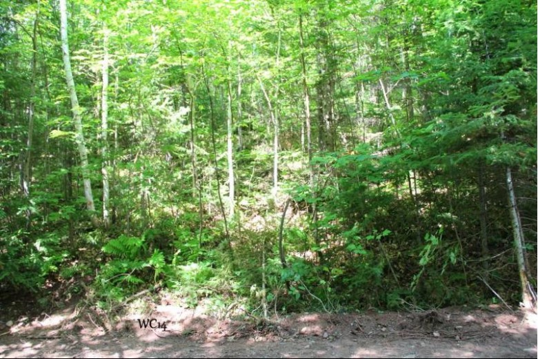 LOT 14 Alpine Dr, Anderson, WI by First Weber Real Estate $24,900