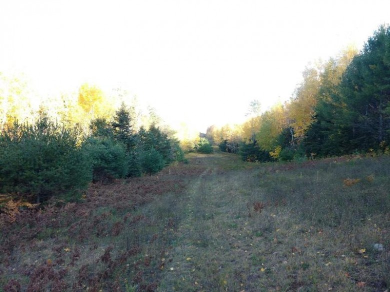 ON Wolf Mountain Rd, Wakefield, MI by Eliason Realty Of Land O Lakes $59,900