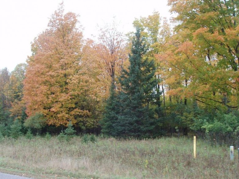 LOT 16 Margaret Ln, Lake, WI by Birchland Realty, Inc - Park Falls $19,900