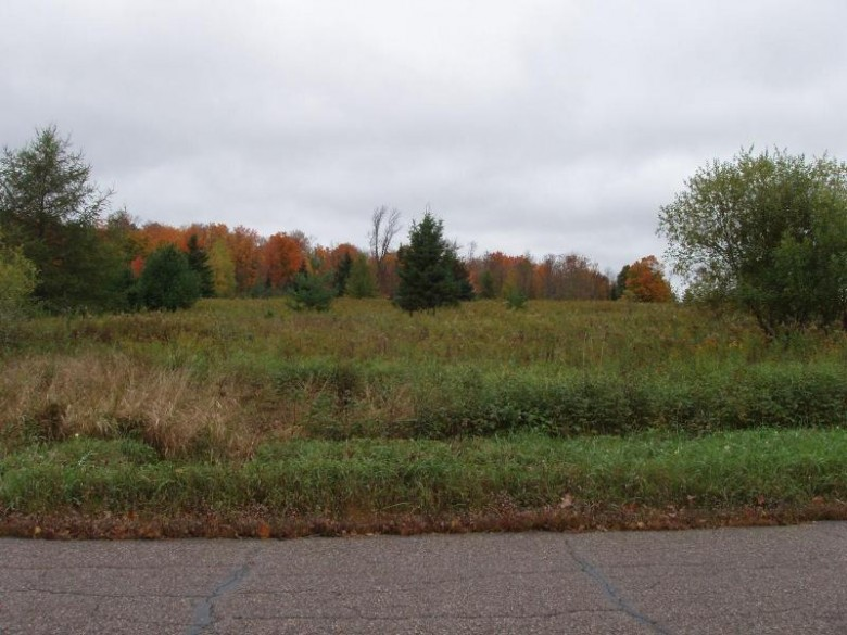 LOT 1 Margaret Ln, Lake, WI by Birchland Realty, Inc - Park Falls $14,900