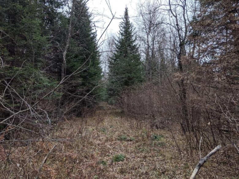 OFF Hickory Dr, Emery, WI by Re/Max New Horizons Realty Llc $79,900