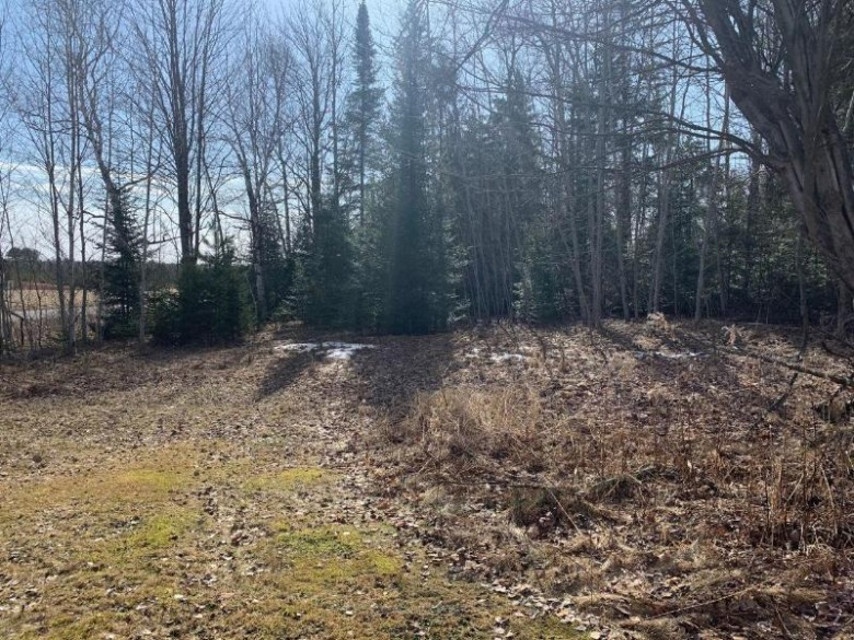 ON Hwy 13, Park Falls, WI by Birchland Realty, Inc - Park Falls $29,900