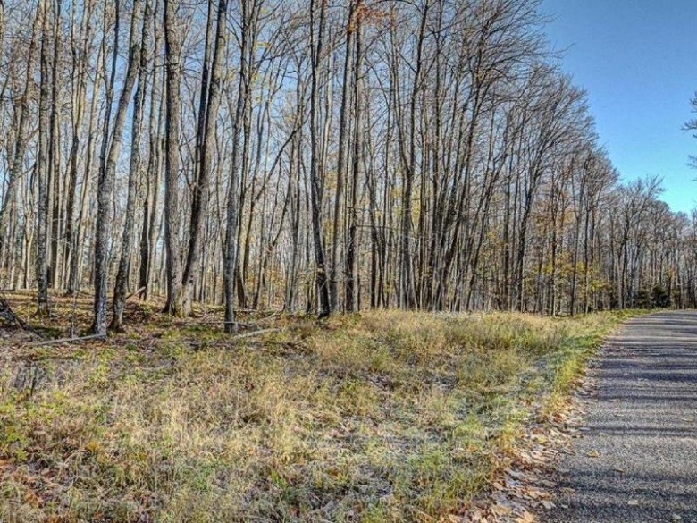 ON Timber Wolf Rd LOT 31, Presque Isle, WI by Re/Max Property Pros-Minocqua $119,900