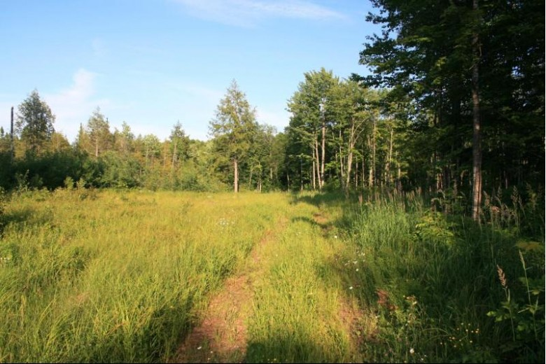 ON East Shore Rd, Marenisco, MI by First Weber Real Estate $299,950