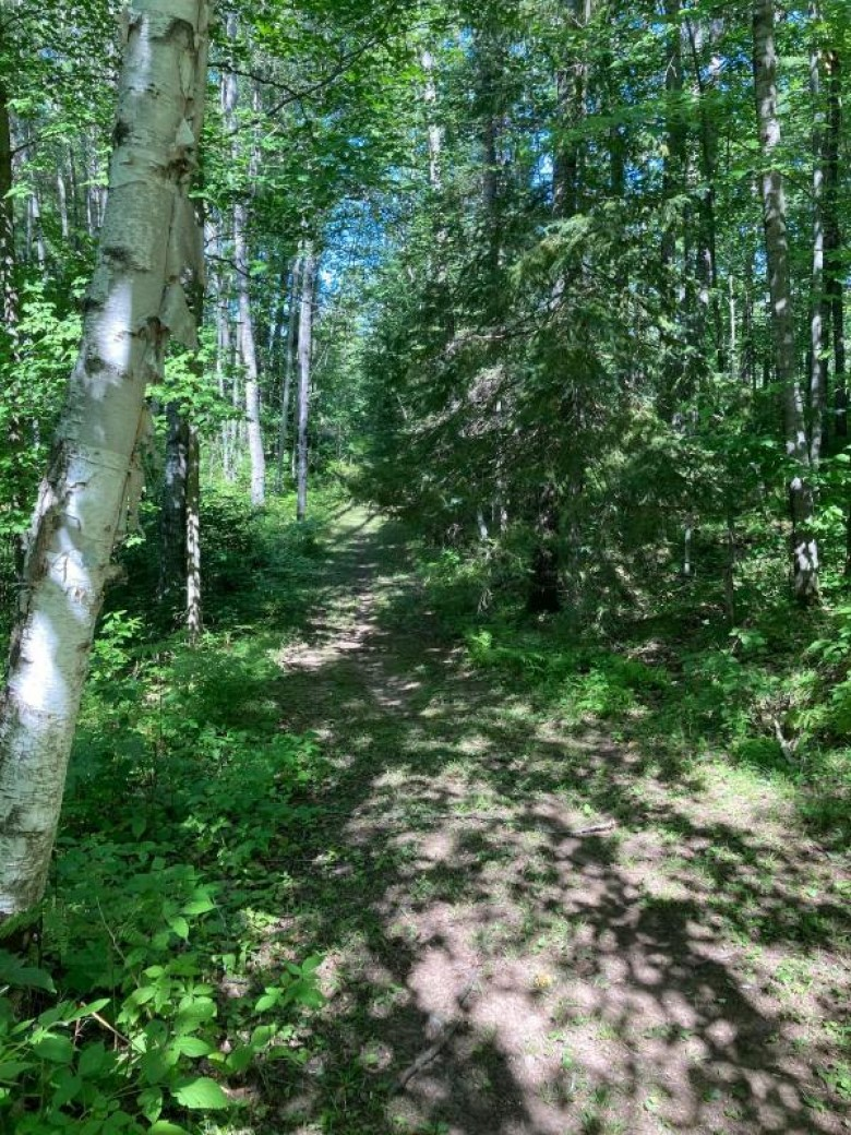 ON Ison Rd, Crandon, WI by First Weber Real Estate $84,000