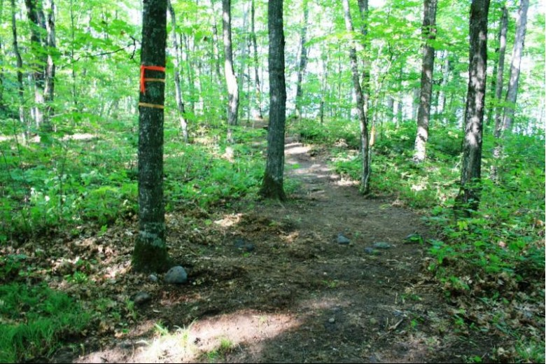 TBD Elizabeth Ln 2, Iron River, MI by First Weber Real Estate $179,950