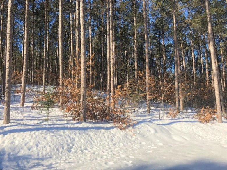 ON Champion Ln, Woodboro, WI by Coldwell Banker Mulleady-Rhldr $16,900
