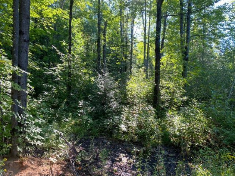 ON Rozell Rd, Little Rice, WI by Northwoods Community Realty, Llc $70,000