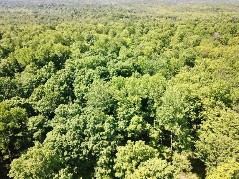 OFF Tower Rd, Corning, WI by Re/Max Property Pros - Tomahawk $273,000
