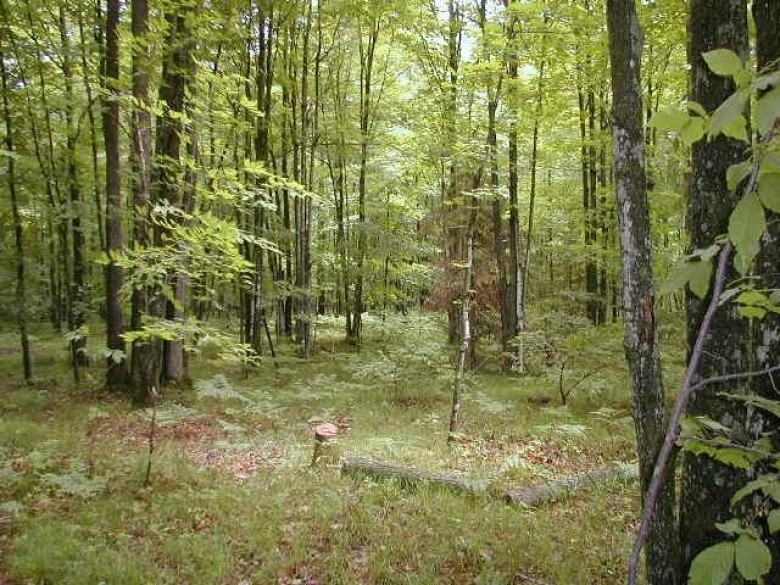 TBD Kratowicz Rd 13, Presque Isle, WI by First Weber Real Estate $39,950