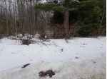 ON Loon Lake Rd LOT 9, Lincoln, WI by Re/Max Property Pros $20,250