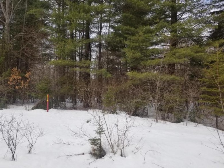 ON Loon Lake Rd LOT 11, Lincoln, WI by Re/Max Property Pros $26,550