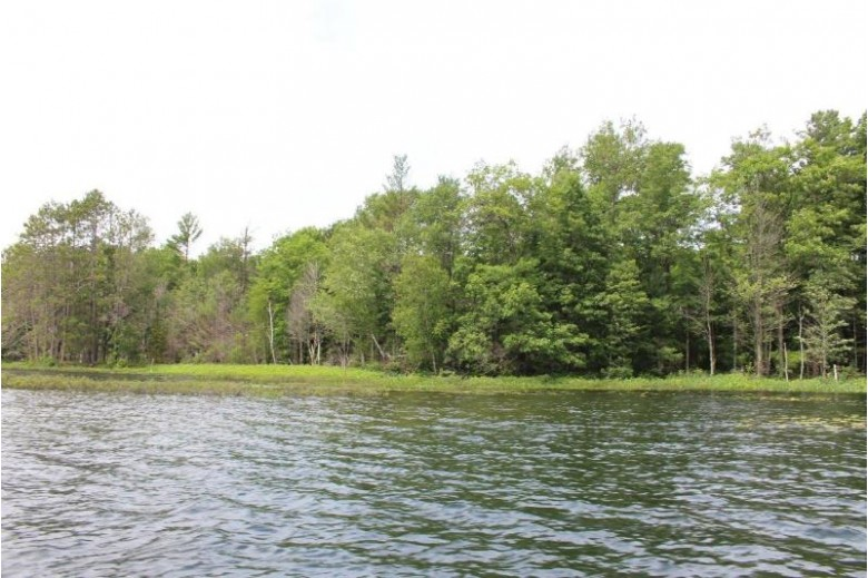 ON Squirrel Lake Rd W, Minocqua, WI by Coldwell Banker Mulleady - Mnq $129,900
