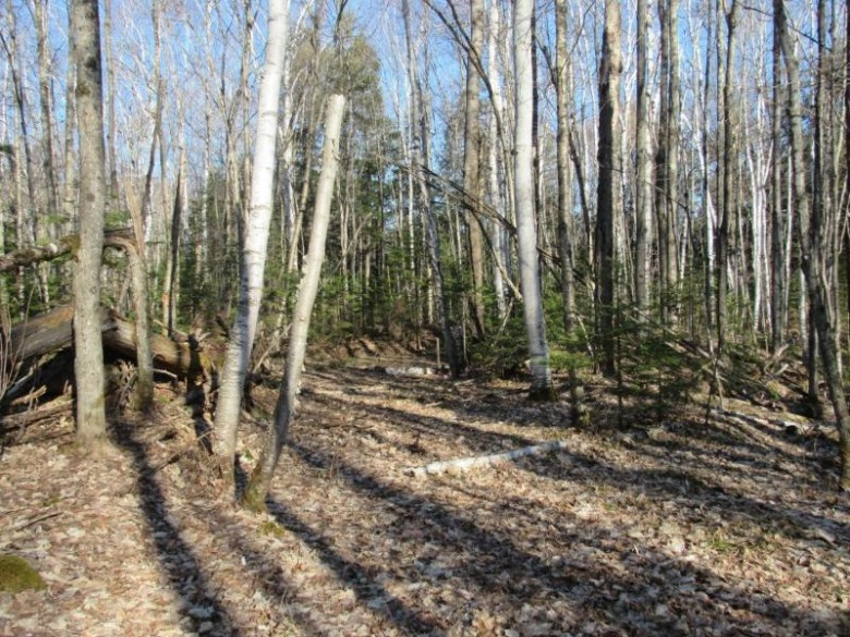 TBD Hewitt Lake Rd, Oma, WI by Clc Realty, Llc. $110,000