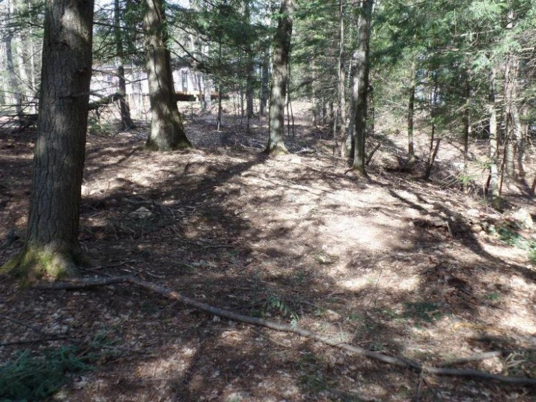 ON Orchard Dr LOT 4, Sugar Camp, WI by First Weber Real Estate $79,900