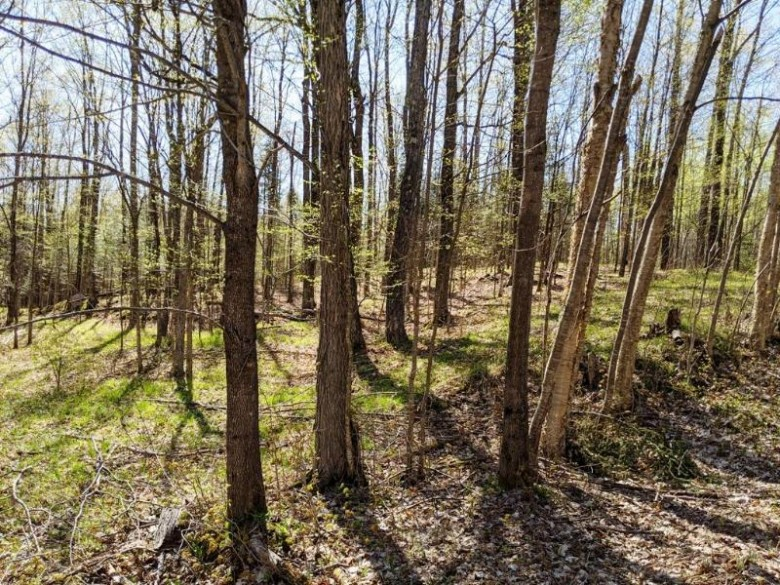 LOT 5 Erickson Rd, Eisenstein, WI by Hilgart Realty Inc $9,900