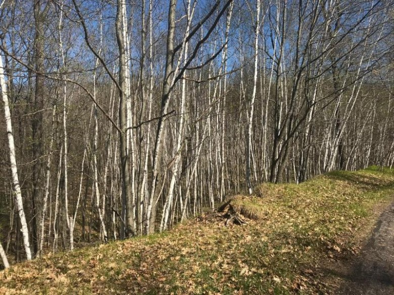 LOT 1 Downey Dr, Lake Tomahawk, WI by Redman Realty Group, Llc $89,900