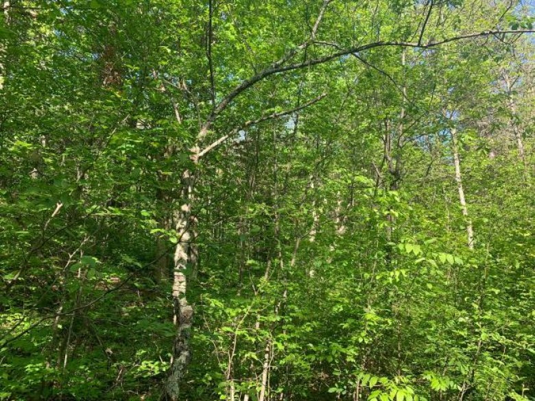 ON Mount View Ln, Corning, WI by Northwoods Community Realty, Llc $48,000