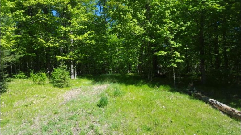 1050 Deer Path Rd, Phelps, WI by Re/Max Property Pros $234,900