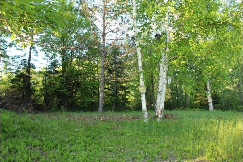 LOTS 5/6 Bay Highlands Dr, Elcho, WI by Century 21 Northwoods Team $229,000