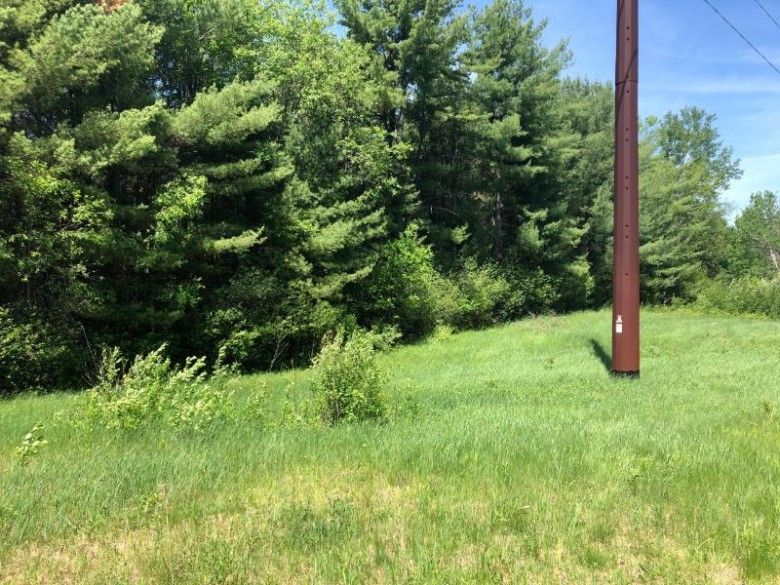 ON Hwy 17, Crescent, WI by Eliason Realty Of The North/Er $39,500