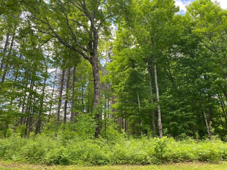 ON Cys Dr, Fifield, WI by Re/Max Property Pros - Tomahawk $149,900