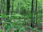 LOT 4 Somo Ridge Dr, Wilson, WI by Lakeplace.com - Vacationland Properties $46,400
