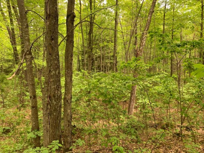 LOT 5 Somo Ridge Dr, Wilson, WI by Lakeplace.com - Vacationland Properties $45,500