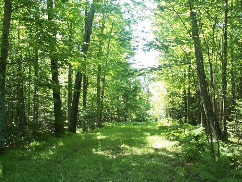 ON Stateline Lake Rd E, Presque Isle, WI by Headwaters Real Estate $179,900