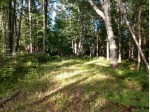 36460 Osprey Point Rd LOT 6, Watersmeet, MI by Eliason Realty Of Land O Lakes $29,900