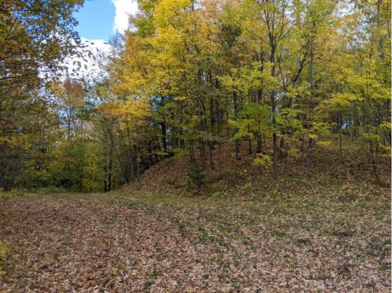 W5577 Cth D, Westboro, WI by Re/Max New Horizons Realty Llc $1,750,000