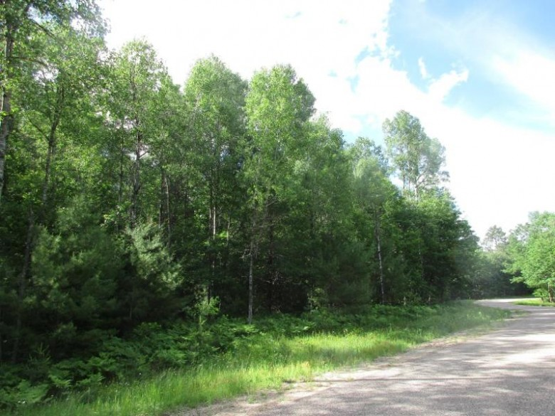OFF Patrick Dr LOT 19, Newbold, WI by Coldwell Banker Mulleady - Mnq $33,900