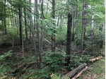 On Heiress Lake Rd E Lot 15, Cassian, WI by Exp Realty, Llc $39,000