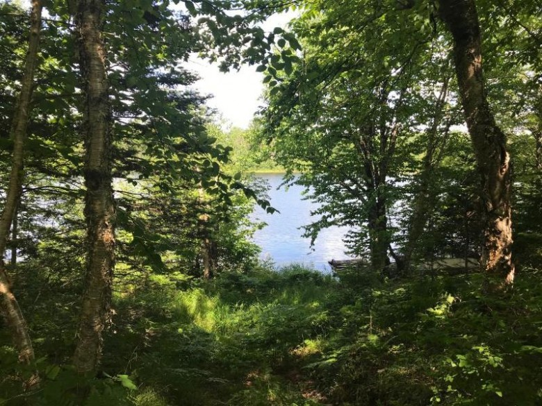0N Little Pine Rd, Oma, WI by Schmidt-Haus Realty $79,900