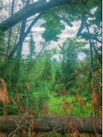 LOT 10/1 Shore Dr W, Mountain, WI by Redefined Realty Advisors, Llc $124,999