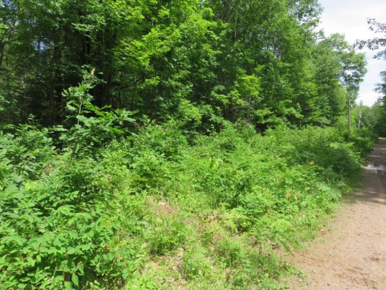 Lot 14 Blue Goose Dr, Manitowish Waters, WI by Redman Realty Group, Llc $25,000